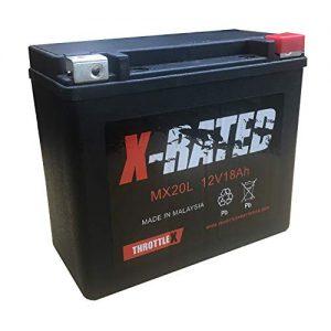 ThrottleX MX20L