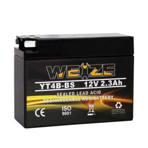 Weize YT4B-BS